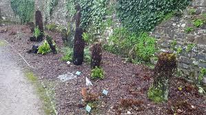 south wales bryophytes false fern moss at the national botanic