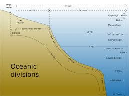 Map Of The Oceans List Of Submarine Topographical Features Wikipedia