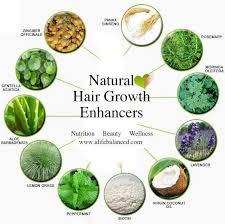 natural hair growth stimulants natural hair growth enhancers zingiber officinale luya is a blood