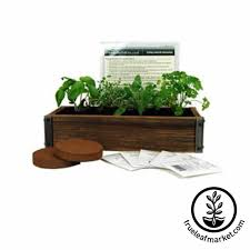 inside herb garden indoor herb garden kit herb garden kit by viridescent wooden