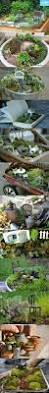 36 best fairy gardens images on pinterest fairies garden mini