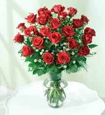 Dozen Roses Send Elegant Two Dozen Roses Flowers To Aruba Aruba Flowers