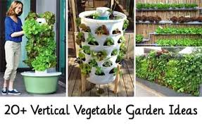 20 vertical vegetable garden ideas lil moo creations