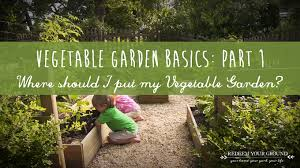 1st question to answer when starting your family vegetable garden