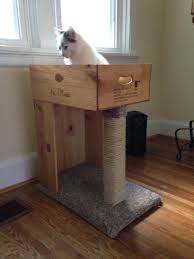 Modern Cat Scratching Post Has Nothing To Do With Dogs But Thought It Was Worth The Mention