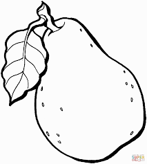 pear fruit coloring page coloring pages coloring pages