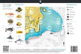 Map With Oceans Ocean Maps Underwater Exploration Surveying Documentation