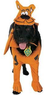 Infant Dog Halloween Costume Scooby Doo Infant Costume Scooby Doo Costumes Scooby Doo Infant