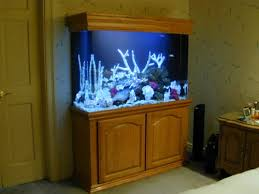 Fish Tank Reception Desk 51 Best Fish Tanks That I Am In Love With Images On Pinterest