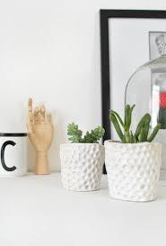 diy mini succulent planters burkatron