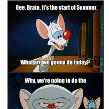 Pinky And The Brain Meme - summer night adventures with pinky and the brain by vincent1