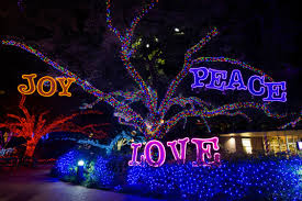 it u0027s a great weekend in houston for pizza and holiday lights