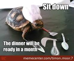Funny Chef Memes - chef memes best collection of funny chef pictures