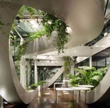 plant life vegetation enhance this atrium combining nature and