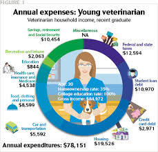 can we quantify the true cost of veterinary student debt