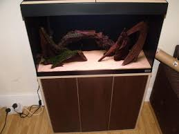 Fluval 125 Cabinet Reptile Forums View Single Post W Midlands Fluval Roma 125