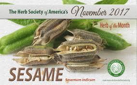 native plant society of texas herb society of america home