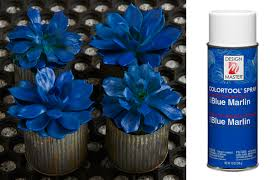 blue marlin dm color