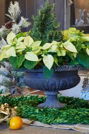 evergreen home decor five festive trends in seasonal decor summer classics