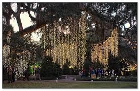 christmas lights to hang on outside tree hanging christmas lights outside tree