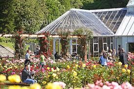New Zealand Botanical Gardens Tourists Enjoying Flowers In The Norwood Garden