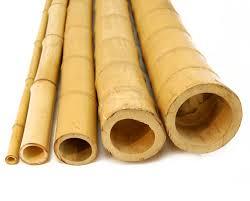 bamboo poles natural 1