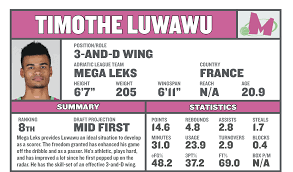 basketball player scouting report template timothe luwawu is the type of wing player every team wants in the timothe luwawu is the type of wing player every team wants in the 2016 nba draft sbnation com