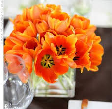 Pretty Orange 34 Best Grey Navy Orange Wedding Images On Pinterest Marriage