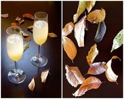 12 best thanksgiving prosecco pairings images on