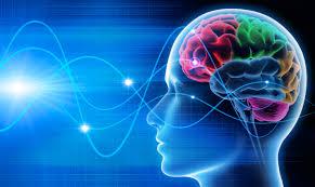 Brain Mapping Brain Map U0026 Neurofeedback Dr Yoshi