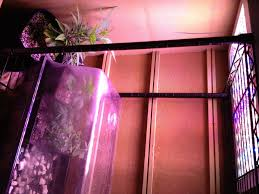 i setup your indoor garden and teach you how to use it