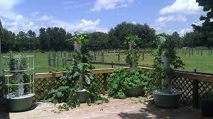 Family Garden - tower garden