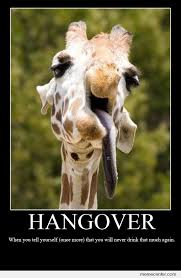 Hangover Memes - hangovers by ben meme center