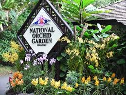 Singapore Botanic Gardens Location Singapore Botanic Gardens Workshops Guided Walks For Organised