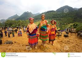 Hmong Map Flower Hmong People Editorial Image Image 49444550