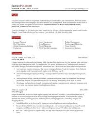 standard format resume standard resume 5 neat design 3 the 25 best ideas about format on