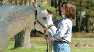 How To Tell If A Horse Is Blind Horse Health Issues Expert Advice On Horse Care And Horse Riding