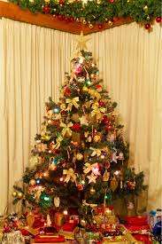 collection real decorated tree pictures home design