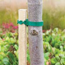 tree stakes wooden tree stakes 6 co uk garden outdoors