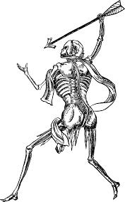halloween skeleton silhouette human skeleton clipart