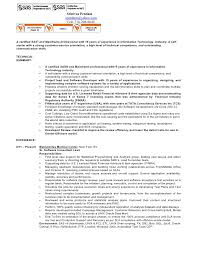 Entry Level Sas Programmer Resume Essay On 2017 Odyssey Two Someone To Do My Assignment Remedial