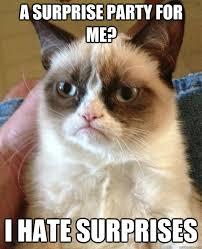 Meme Surprise - a surprise party for me cat meme cat planet cat planet