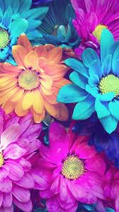 Pretty Colors Iphone Wallpaper U2026 Pinteres U2026