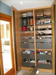 shallow kitchen cabinets stand up storage cabinets with wood free standing garage and tall