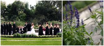 harry p leu gardens wedding an orlando venue highlight