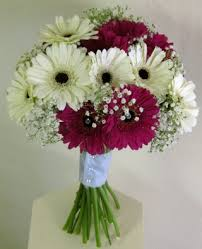 gerbera bouquet acklam flowers weddings cerise gerbera bouquet