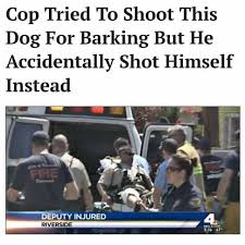 Dog Barking Meme - dopl3r com memes cop tried to shoot this dog for barking but he