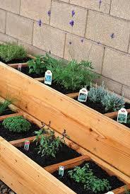 Herb Garden Idea Outdoor Herb Garden Ideas The Idea Room