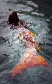 847 best mermaids images on pinterest merfolk little mermaids