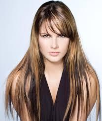 highlights underneath hair brown hair blonde highlights underneath hairs picture gallery